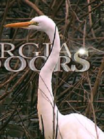 GeorgiaOutdoors.380x212